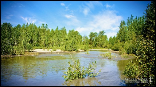 Susitna River creek, photographed in Matanuska-Susitna Borough, Alaska (31 May 2011). Day 01 of the 2011 Roadtrip from Alaska to Florida (Mile 0103 of 7221).
