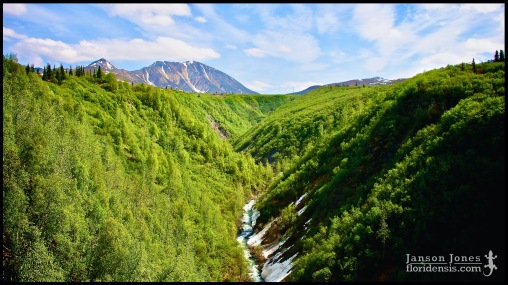 Hurricane Gulch, photographed in Matanuska-Susitna Borough, Alaska (31 May 2011). Day 01 of the 2011 Roadtrip from Alaska to Florida (Mile 0175 of 7221).
