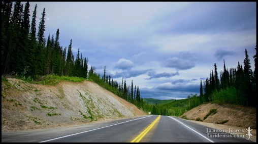 The Alaska Highway, photographed in Southeast Fairbanks Census Area, Alaska (01 June 2011). Day 02 of the 2011 Roadtrip from Alaska to Florida (Mile ~0540 of 7221).